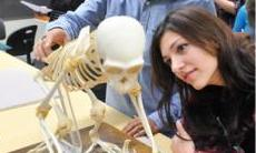 Student looking at a skeleton