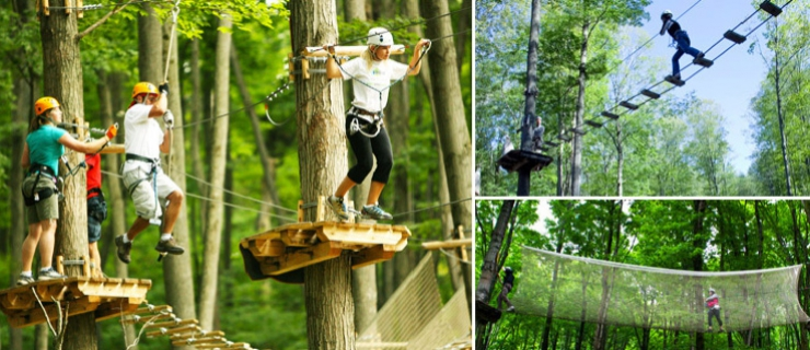 treetop trekking october 14th athletics recreation. Black Bedroom Furniture Sets. Home Design Ideas